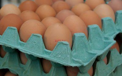 Hoeveel eieren zijn gezond?